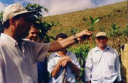 curso pratico 2006 iuna apratic 15