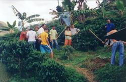 curso pratico 2006 d martins apratic 12