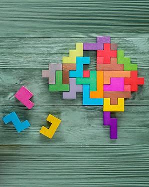brain puzzle 2-01.jpg