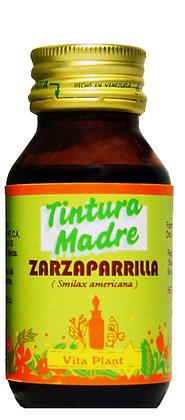 Zarzaparrilla (Smilax americana) tintura