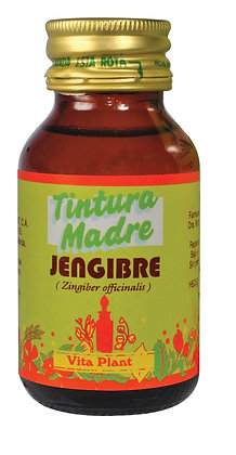 Jengibre (Zingiber officinale) tintura