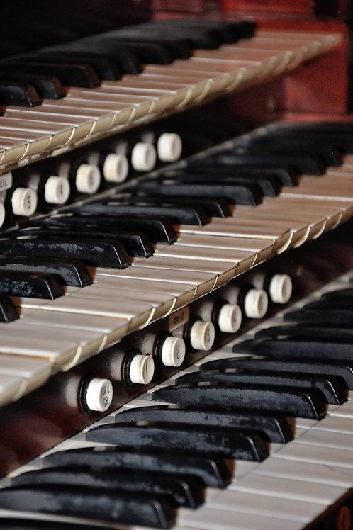 Sponsor an Octave of Keys