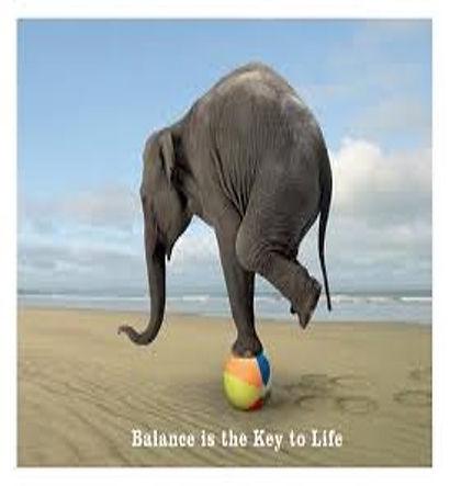 elephant balance.jpg