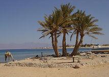Egyptian Desalination