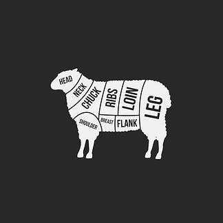 sheep diagram.png