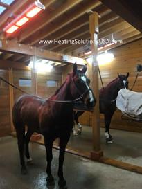 solaira alpha series heater HORSE STALL CELESTE VELLA.jpeg