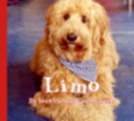 LImo_omslag_voorkant.jpg