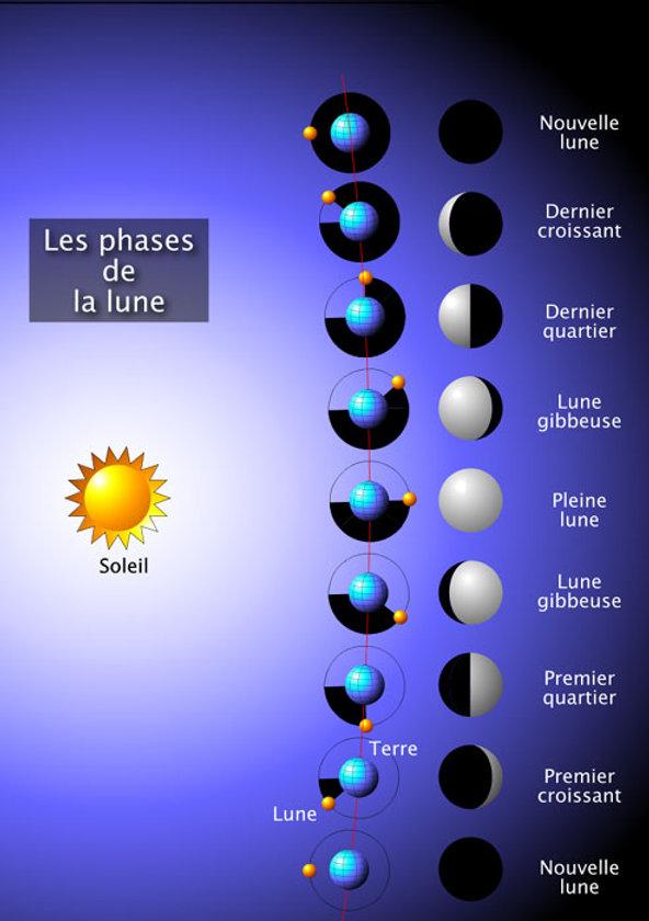 Lune_Phases_G.jpg