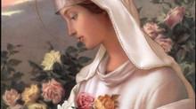 Rosa Mística: oração, sacrifício e penitência.