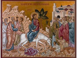 O Domingo de Ramos nos prepara para a vinda do Senhor.