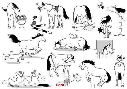 EqNC-Fun-for-kids-3-Draw-a-Horse.png