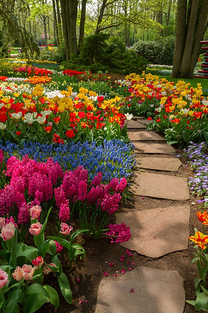 Stone path  winding in a garden.jpg