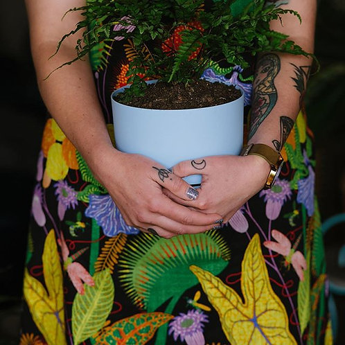 Plant Babysitting