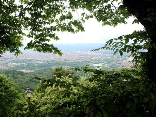 TRAVEL: A Hazelnut Love Affair - Piedmont, Northern Italy