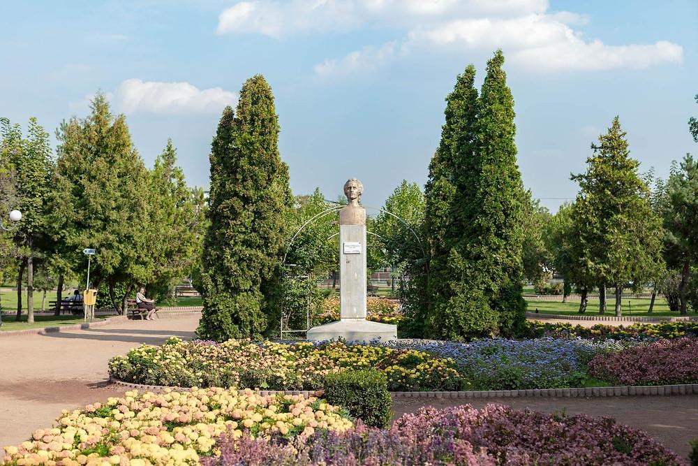 Centre Ville de Bârlad, Roumanie