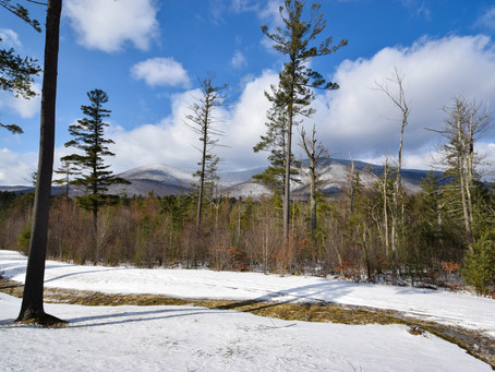 Mountain Getaway to Manchester, Vermont