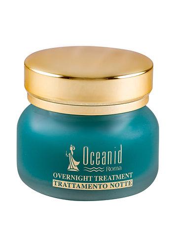 睡眠面膜 Overnight Treatment