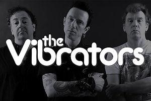 TheVibrators_StoreImg_large.jpg