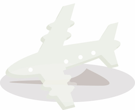 #2 How many airplanes do Indians take in one year?
