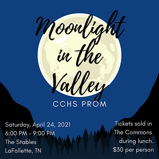 Moonlight in the VAlley (1).png