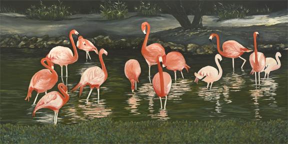 Flamingo in Habitat
