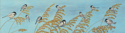 Chickadees on Seaoats