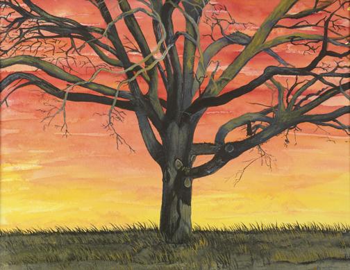 Tree of Life Sunset