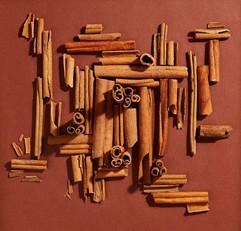 Monochromatic Photography - Cinnamon Sticks
