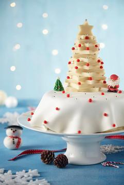 Christmas Cake - Femina Magazine