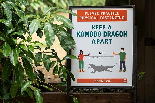 L.A.-Zoo-Reopen-Precautions.jpg