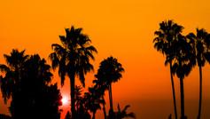 20160824 LA SF Valley Sunset Red Black P