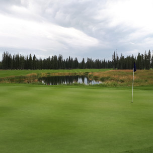 Come for the day, stay for a lifetime - Coyote Creek Resort