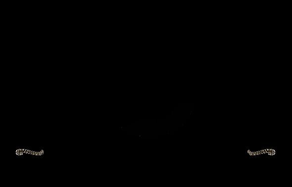 logo black full 2021.png