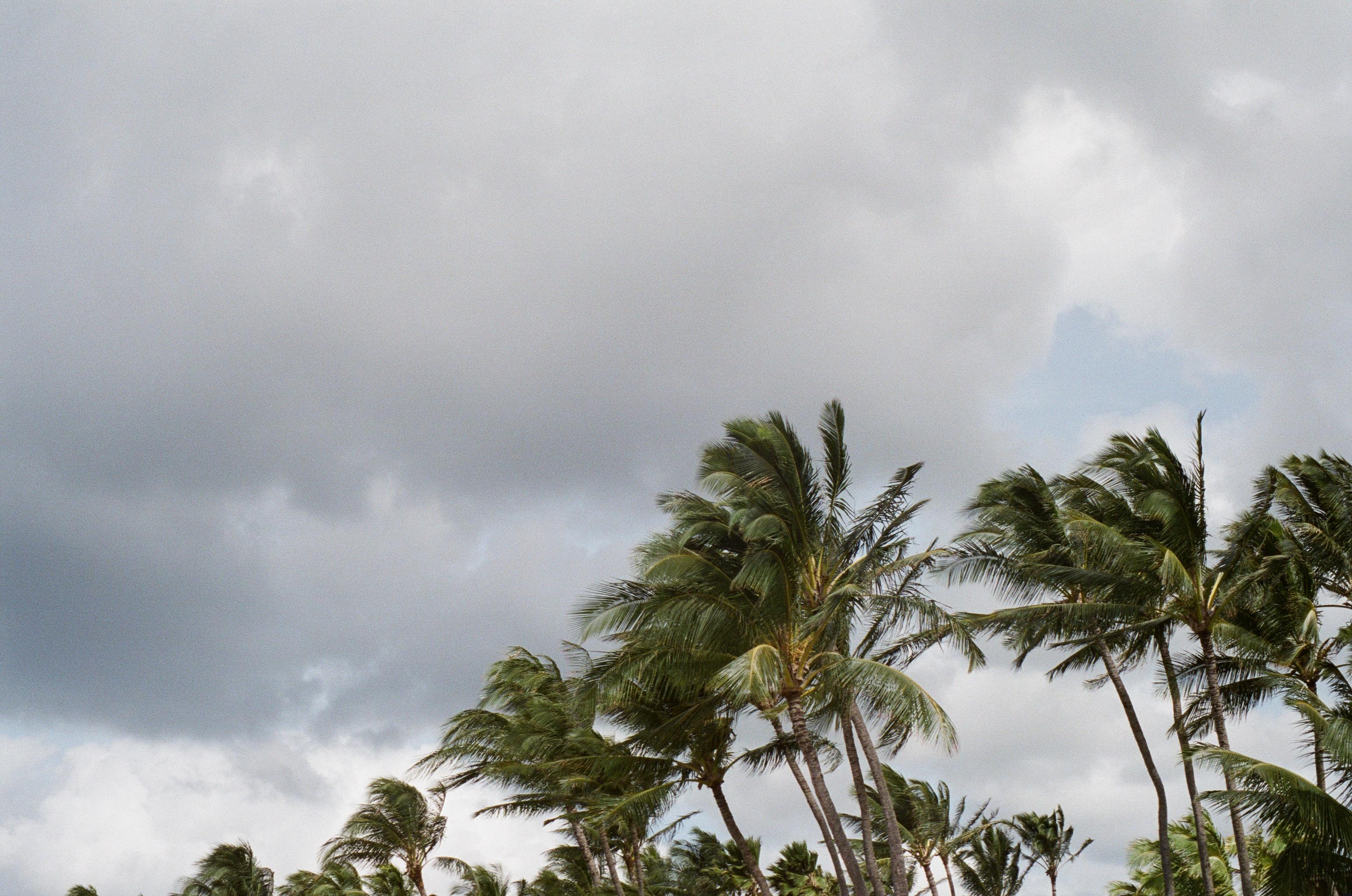 Hanauma, Oahu