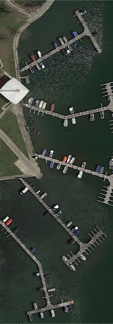 South dock slips