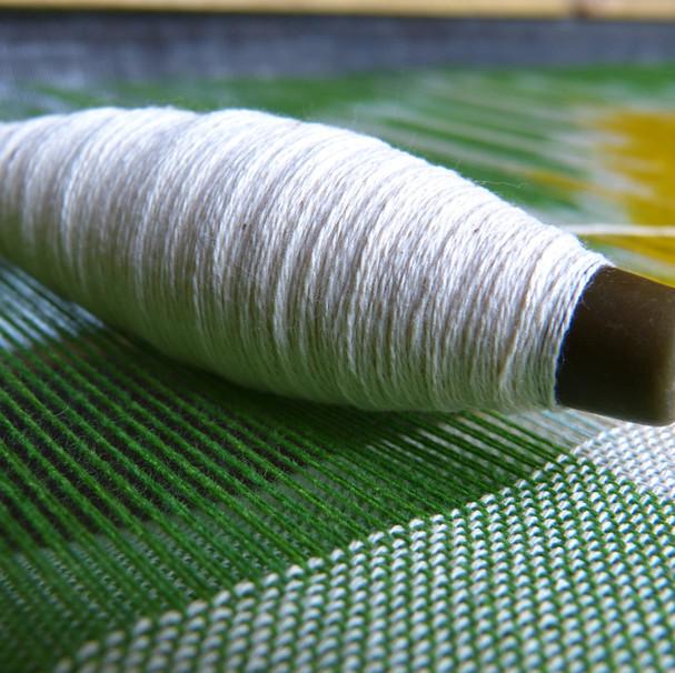 Hydrolized Silk Protein