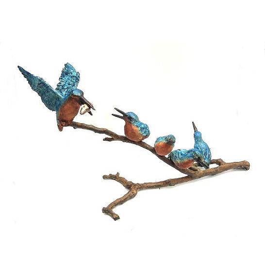 Family Kingfisher
