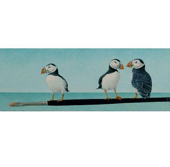 Papegaaiduikers op penseel