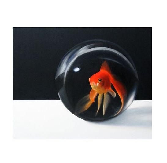 Marble goldfish