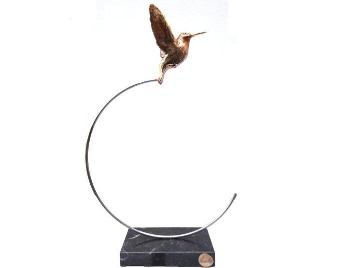 Kolibrie op spiraal