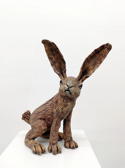 Hare (brown)