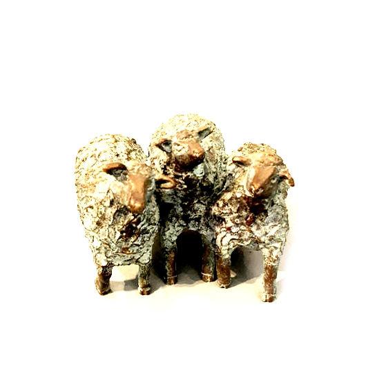 Drie schaapjes