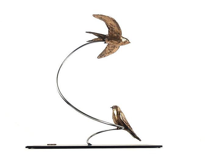 Zwaluwen op spiraal