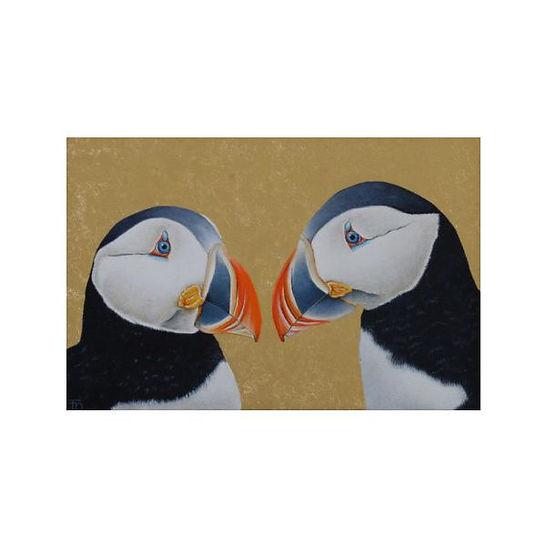 Papagaaiduikers