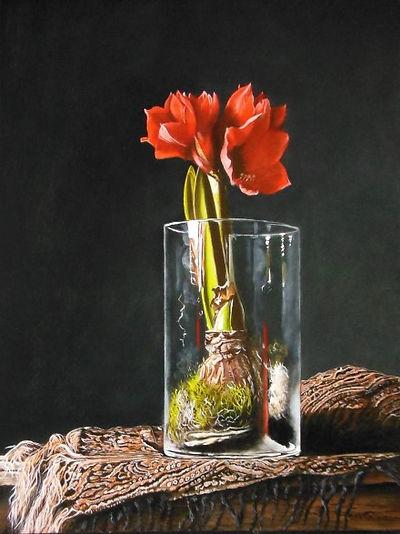 Amaryllis in glazen pot