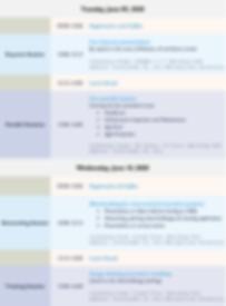 schedule-raic2020.png