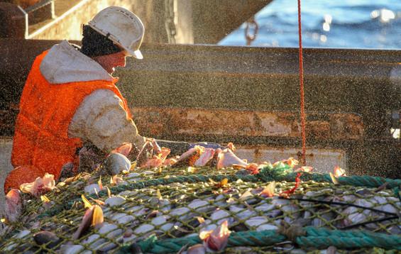 Рыболовный траулер