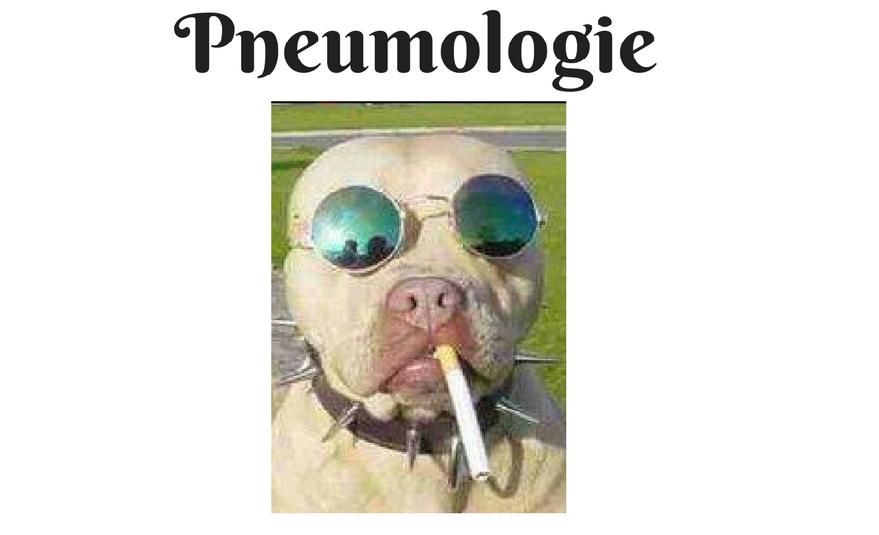 pneumo