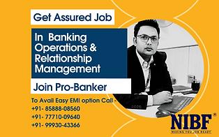 Pro Banker