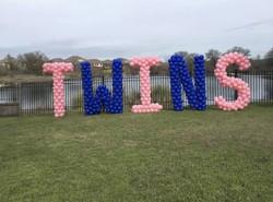 Yard Balloon for Baby Twins!
